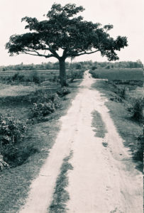 cambodia-041